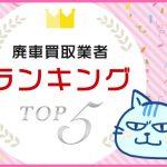 ranking_top5_pt2
