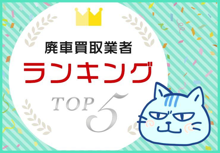 ranking_top5_pt3